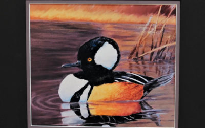 2018 Montana Junior Federal Duck Stamp